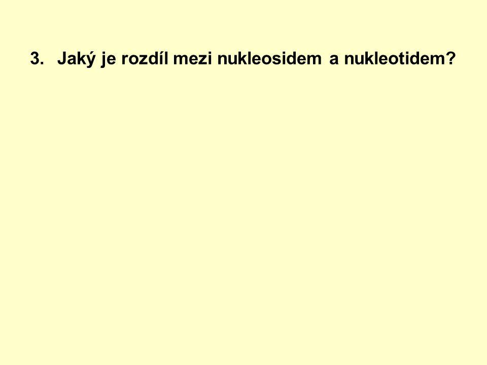 3.Jaký je rozdíl mezi nukleosidem a nukleotidem
