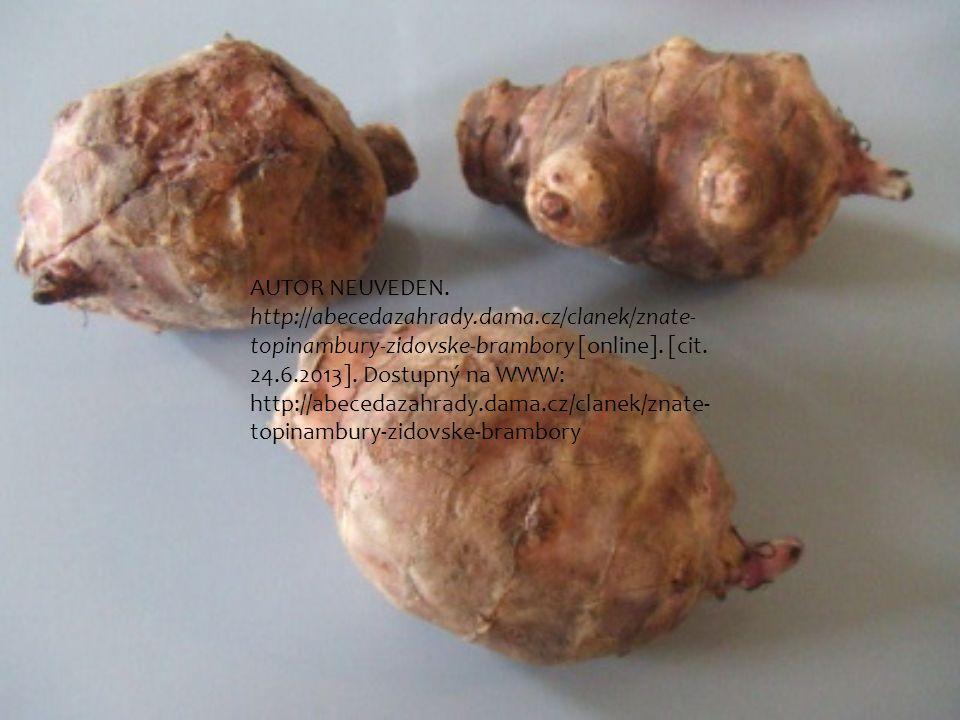 AUTOR NEUVEDEN. http://abecedazahrady.dama.cz/clanek/znate- topinambury-zidovske-brambory [online]. [cit. 24.6.2013]. Dostupný na WWW: http://abecedaz
