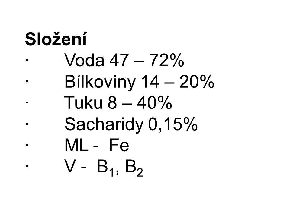 Složení · Voda 47 – 72% · Bílkoviny 14 – 20% · Tuku 8 – 40% · Sacharidy 0,15% · ML - Fe · V - B 1, B 2