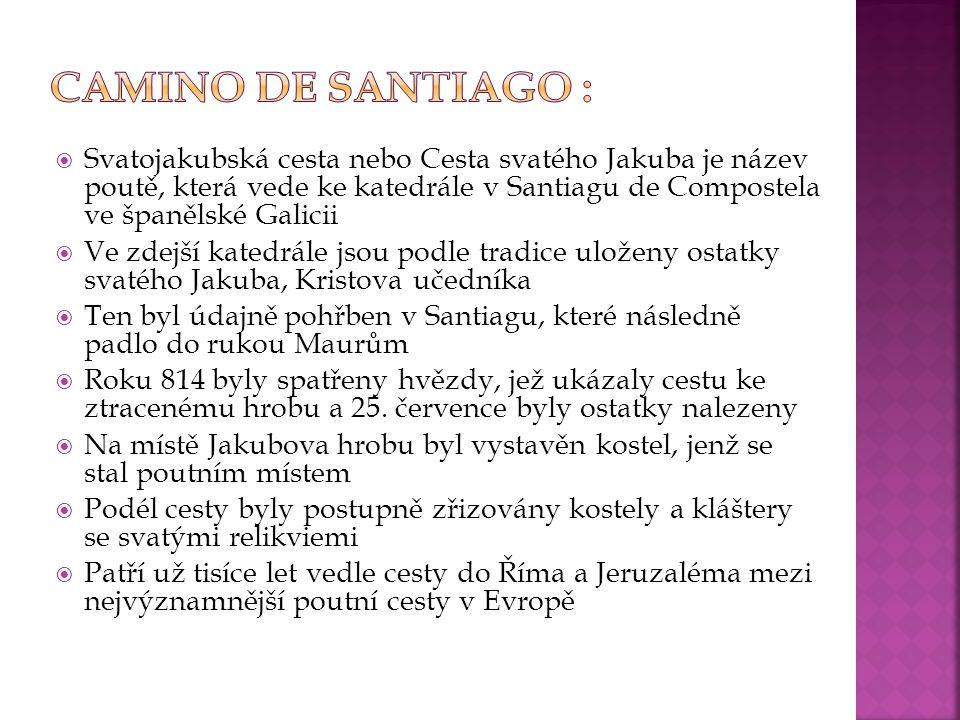  Svatojakubská cesta nebo Cesta svatého Jakuba je název poutě, která vede ke katedrále v Santiagu de Compostela ve španělské Galicii  Ve zdejší kate