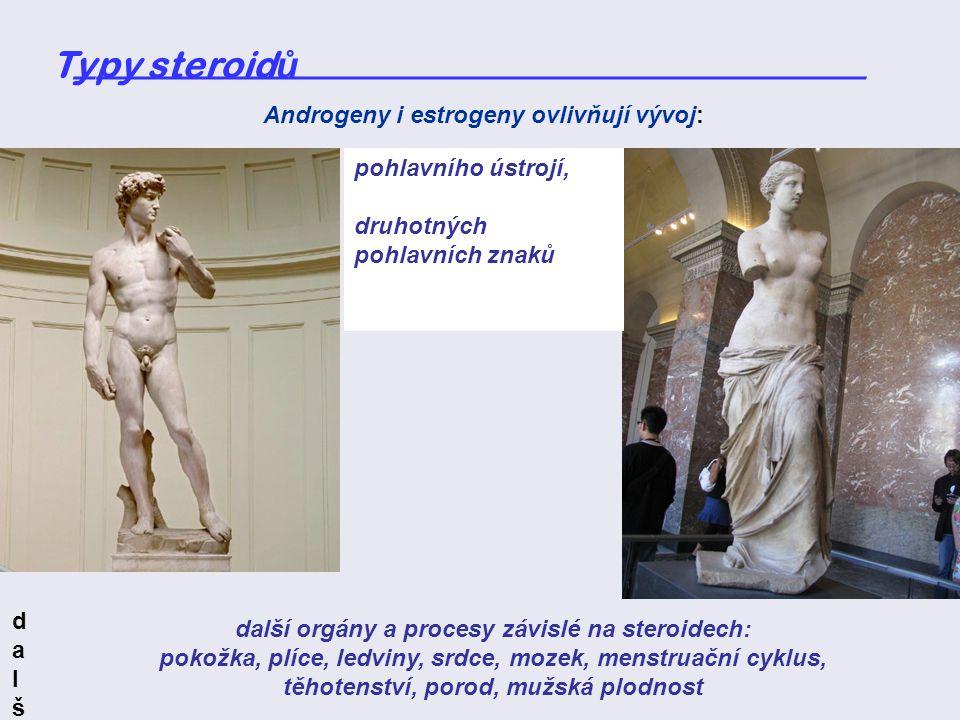 Typy steroid ů _____________________________________ pohlavního ústrojí, druhotných pohlavních znaků Androgeny i estrogeny ovlivňují vývoj: další orgá