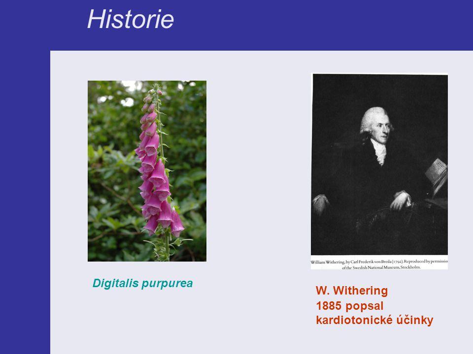 Historie W. Withering 1885 popsal kardiotonické účinky Digitalis purpurea