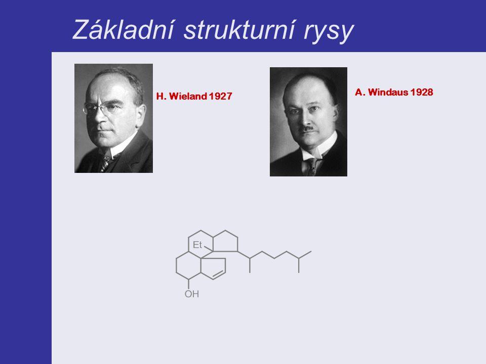 Základní strukturní rysy H. Wieland 1927 A. Windaus 1928