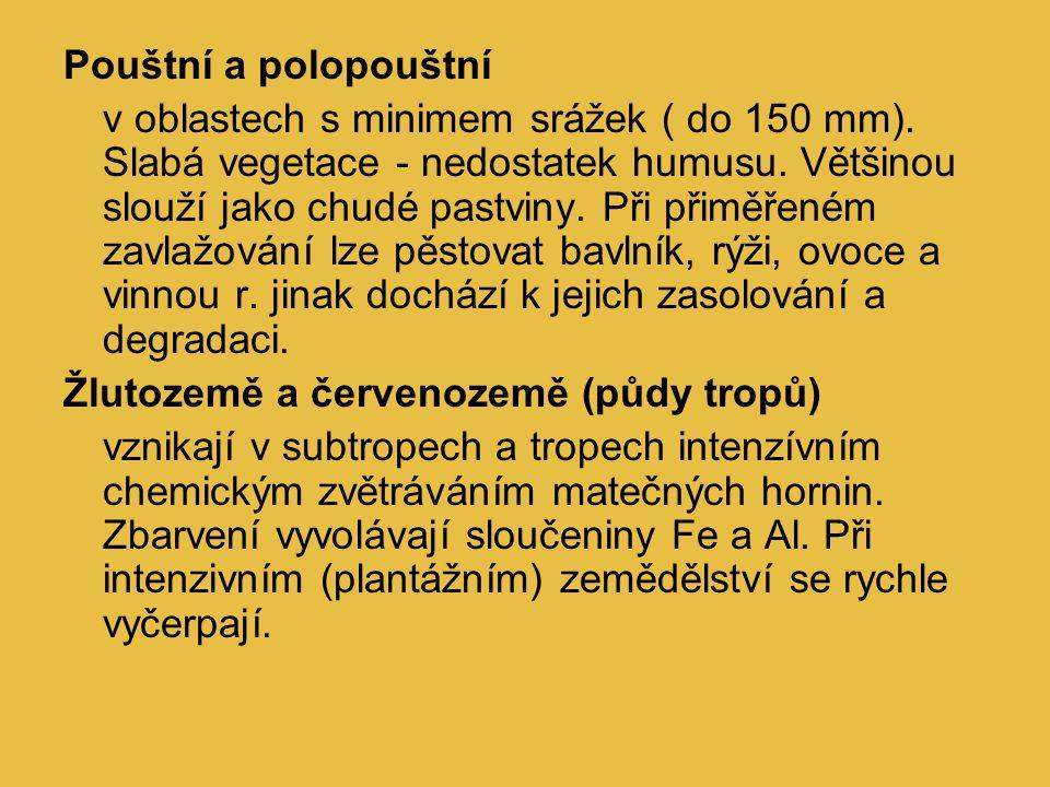 černozem na spraši (jižní Slovensko) hl.půdotvorný proces - humifikace