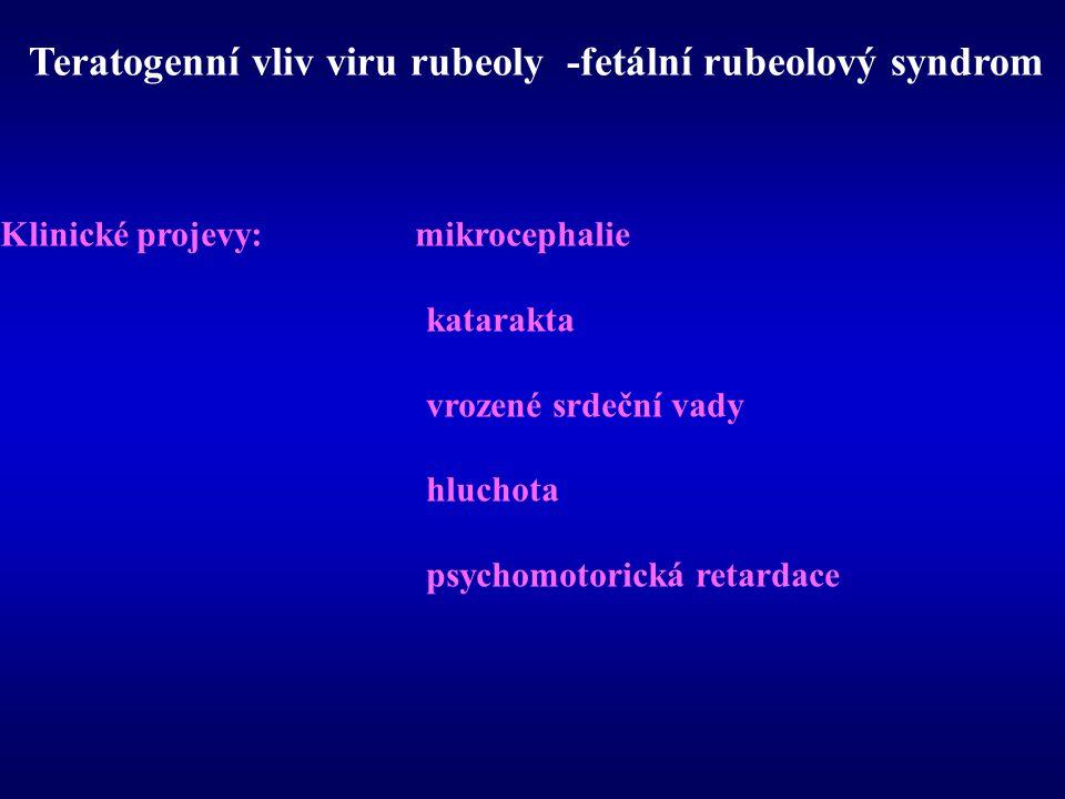 Teratogenní vliv viru rubeoly -fetální rubeolový syndrom Klinické projevy: mikrocephalie katarakta vrozené srdeční vady hluchota psychomotorická retar