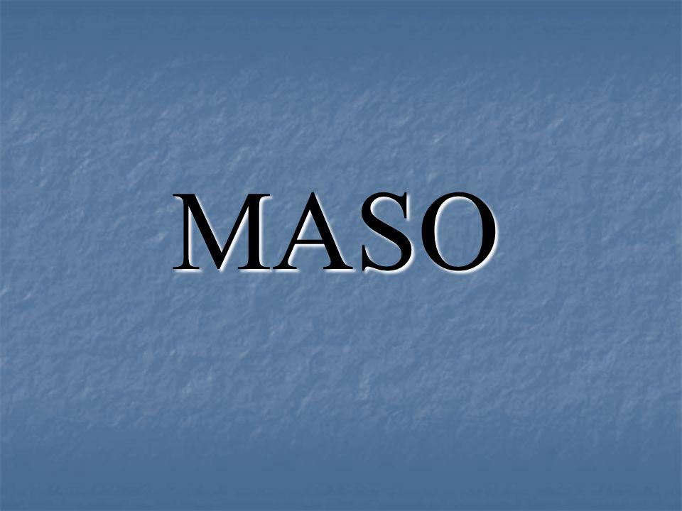1.Charakteristika masa 2. Tržní maso 3.