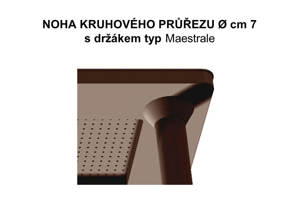 NOHA KRUHOVÉHO PRŮŘEZU Ø cm 7 s držákem typ Maestrale