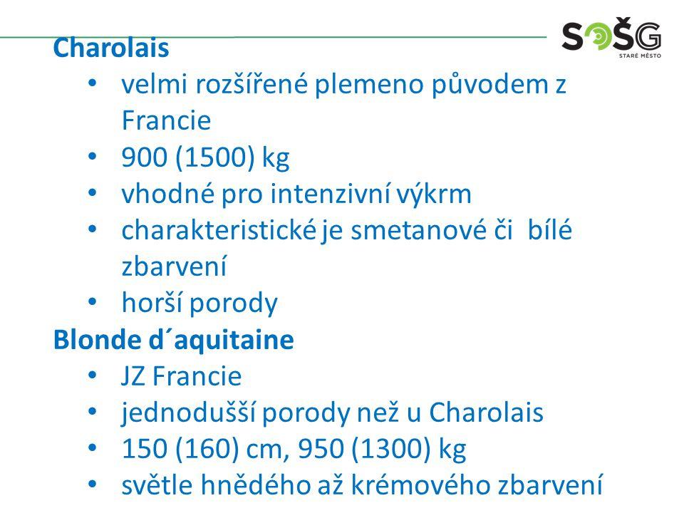 Charolais velmi rozšířené plemeno původem z Francie 900 (1500) kg vhodné pro intenzivní výkrm charakteristické je smetanové či bílé zbarvení horší porody Blonde d´aquitaine JZ Francie jednodušší porody než u Charolais 150 (160) cm, 950 (1300) kg světle hnědého až krémového zbarvení