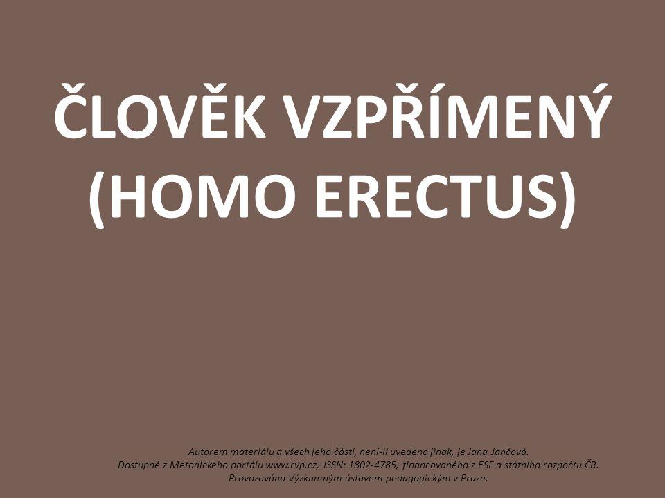 ČLOVĚK VZPŘÍMENÝ (HOMO ERECTUS) Autorem materiálu a všech jeho částí, není-li uvedeno jinak, je Jana Jančová. Dostupné z Metodického portálu www.rvp.c
