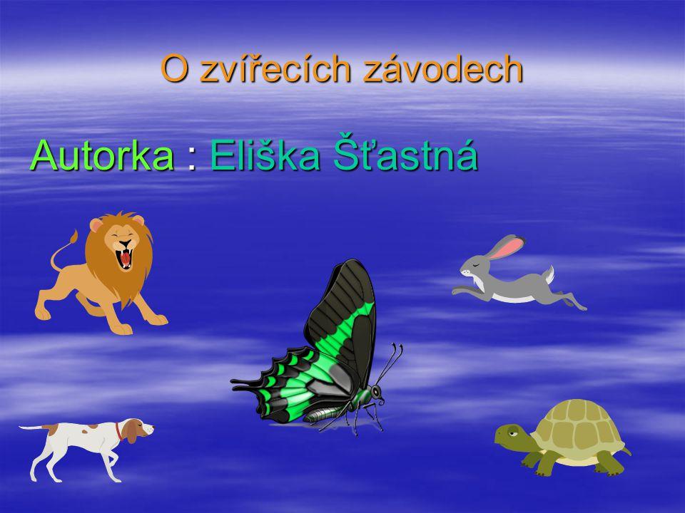 O zvířecích závodech Autorka : Eliška Šťastná