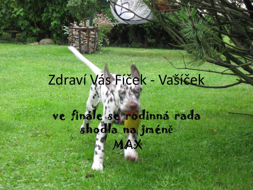 Zdraví Vás Fíček - Vašíček ve finále se rodinná rada shodla na jmén ě MAX