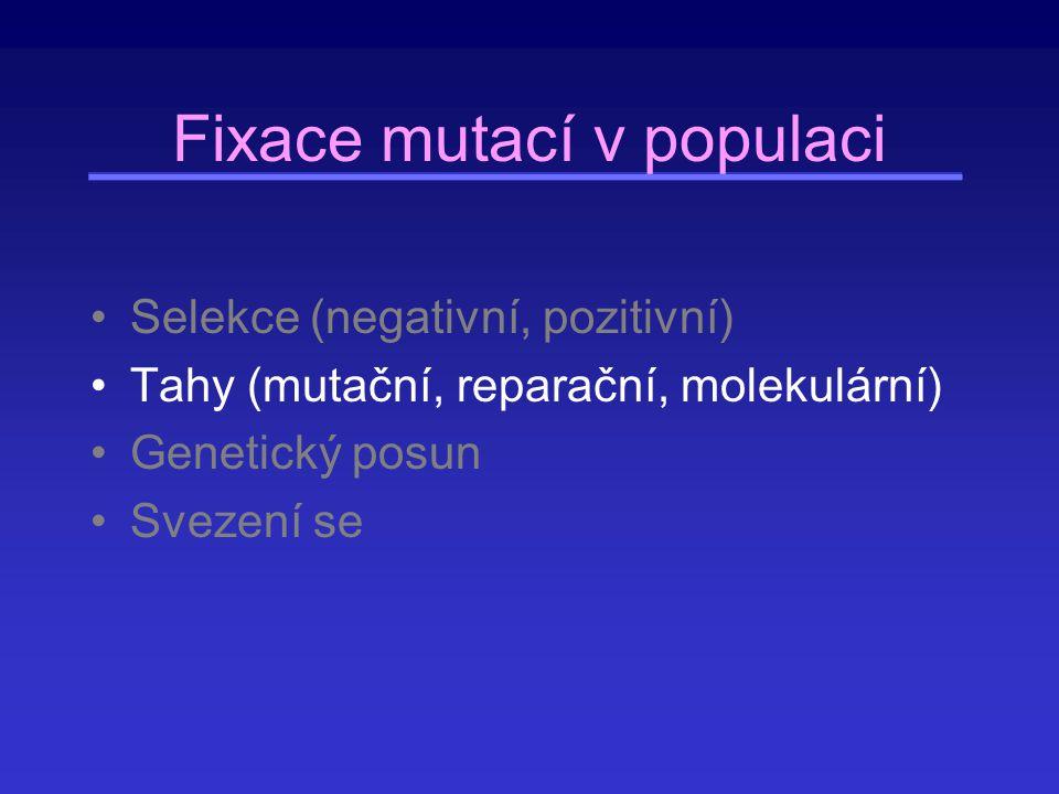 Fixace mutací v populaci Selekce (negativní, pozitivní) Tahy (mutační, reparační, molekulární) Genetický posun Svezení se
