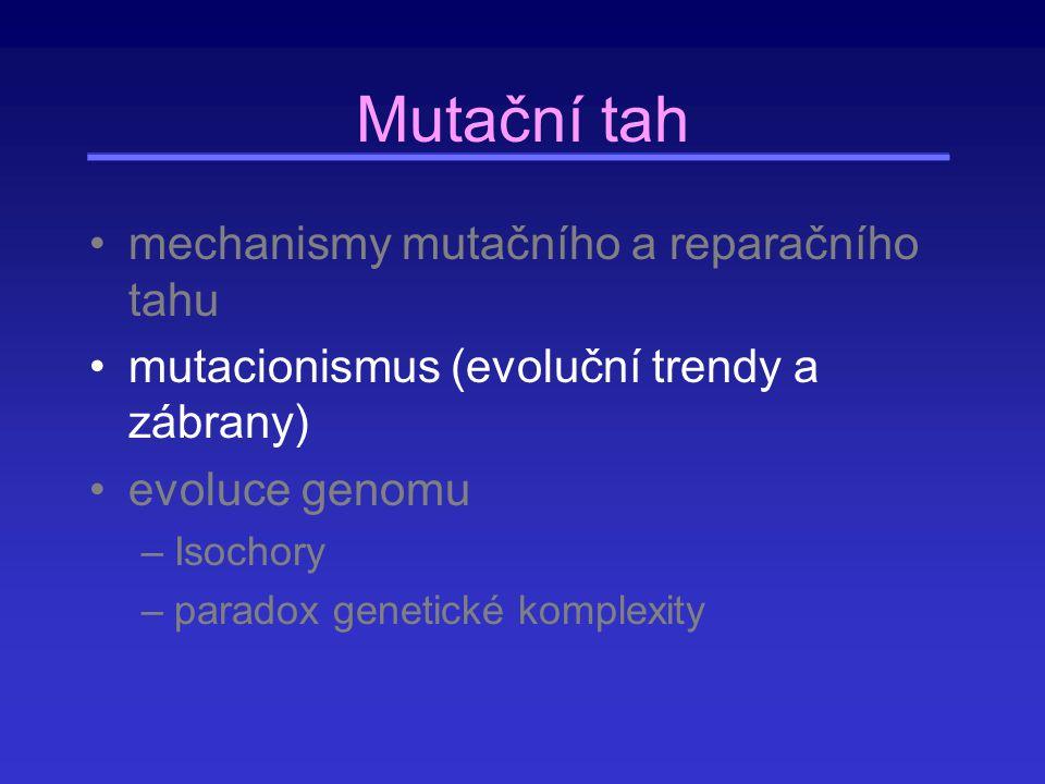 Mutační tah mechanismy mutačního a reparačního tahu mutacionismus (evoluční trendy a zábrany) evoluce genomu –Isochory –paradox genetické komplexity