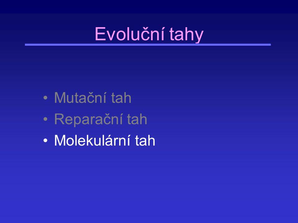 Evoluční tahy Mutační tah Reparační tah Molekulární tah