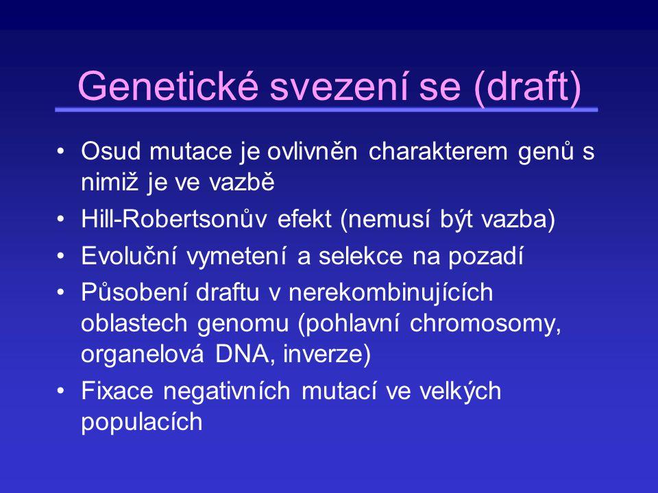 Genetické svezení se (draft) Osud mutace je ovlivněn charakterem genů s nimiž je ve vazbě Hill-Robertsonův efekt (nemusí být vazba) Evoluční vymetení