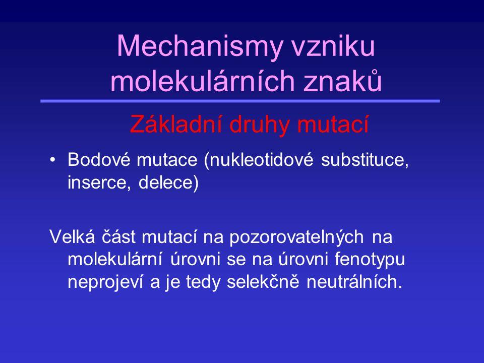 Mechanismy vzniku molekulárních znaků Bodové mutace (nukleotidové substituce, inserce, delece) Velká část mutací na pozorovatelných na molekulární úro