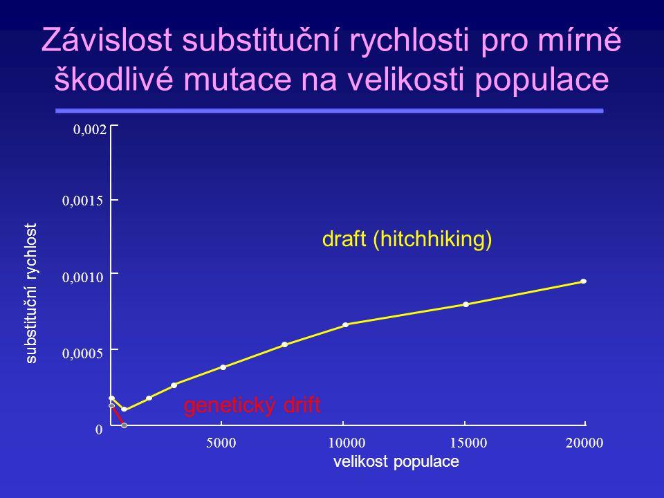 5000100001500020000 0 0,0005 0,0010 0,0015 0,002 velikost populace substituční rychlost Závislost substituční rychlosti pro mírně škodlivé mutace na v