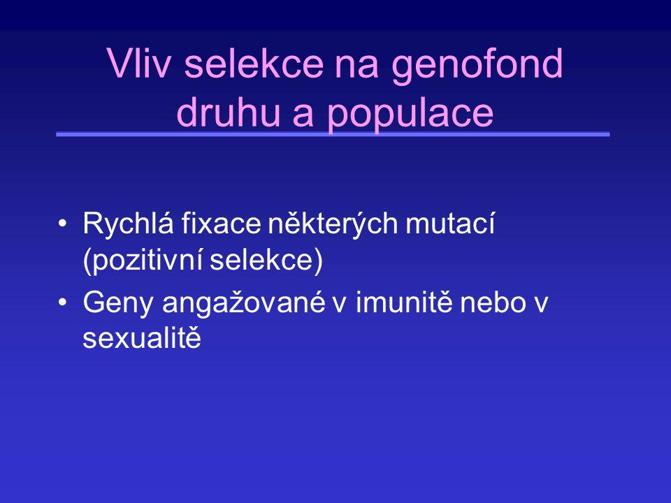 Vliv selekce na genofond druhu a populace Rychlá fixace některých mutací (pozitivní selekce) Geny angažované v imunitě nebo v sexualitě