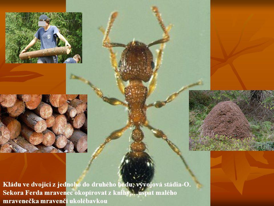 Kládu ve dvojici z jednoho do druhého bodu, vývojová stádia-O. Sekora Ferda mravenec okopírovat z knihy,…uspat malého mravenečka mravenčí ukolébavkou