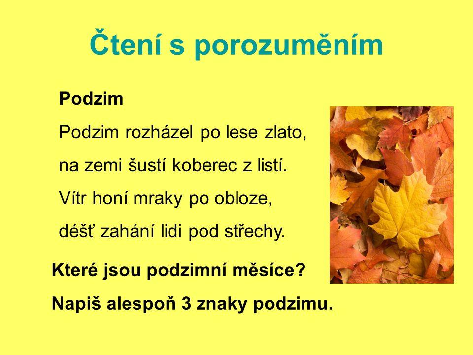 Čtení s porozuměním Podzim Podzim rozházel po lese zlato, na zemi šustí koberec z listí.