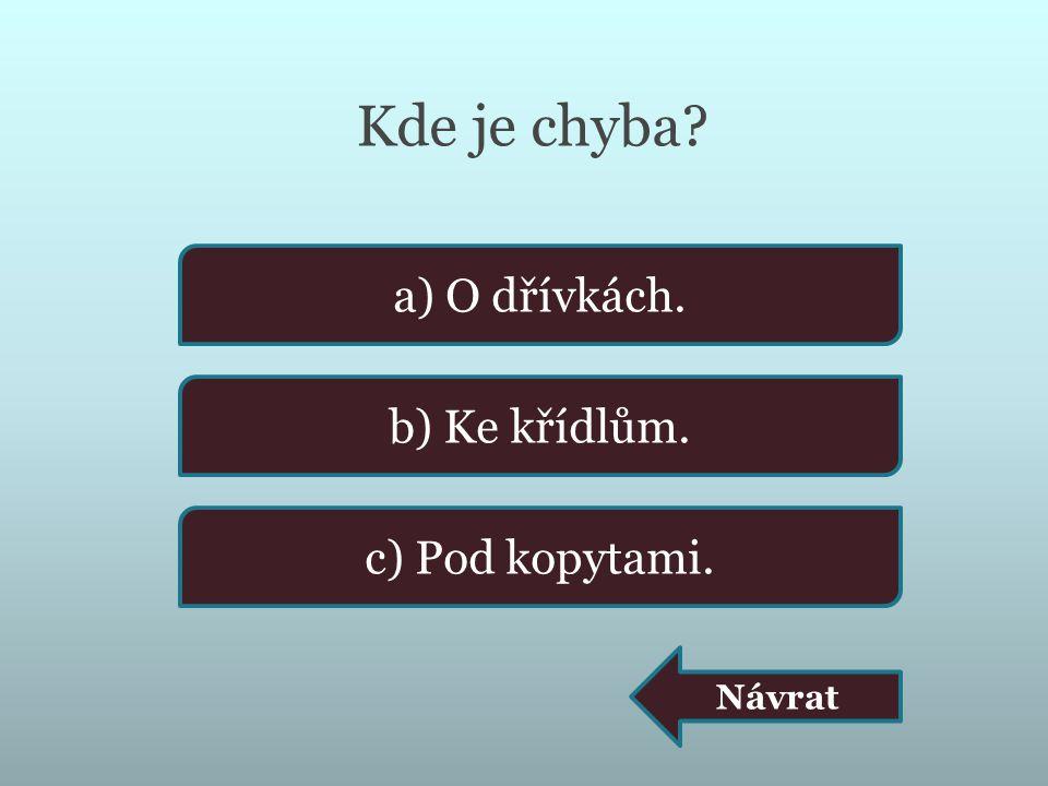 Kde je chyba a) O dřívkách. b) Ke křídlům. c) Pod kopytami. Návrat