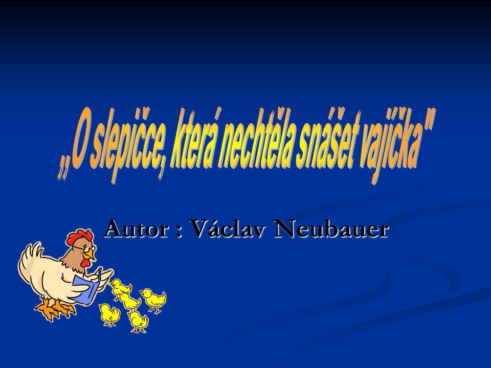 Autor Autor : Václav Václav Neubauer