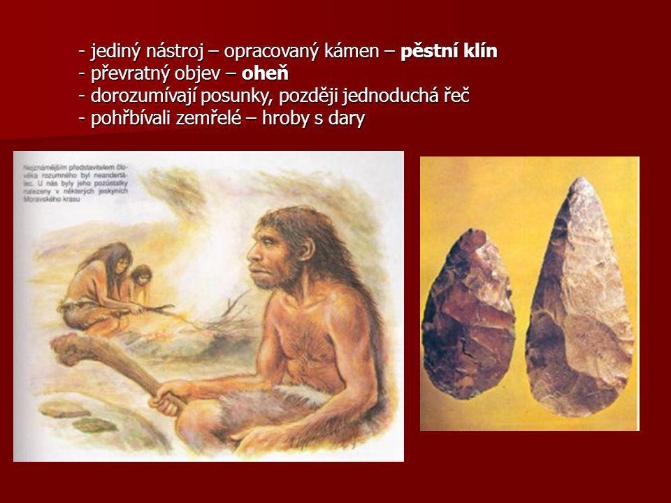 - jediný nástroj – opracovaný kámen – pěstní klín - převratný objev – oheň - dorozumívají posunky, později jednoduchá řeč - pohřbívali zemřelé – hroby