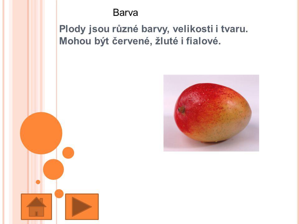 Plody jsou různé barvy, velikosti i tvaru. Mohou být červené, žluté i fialové. Barva