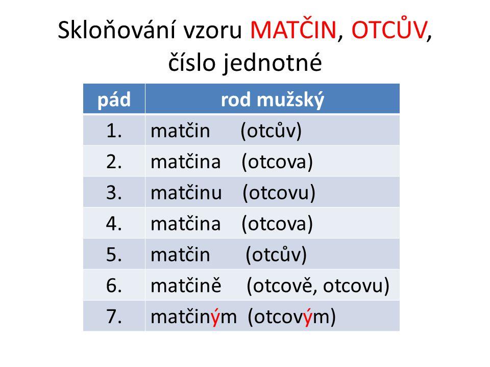 Skloňování vzoru MATČIN, OTCŮV, číslo jednotné pádrod mužský 1.matčin (otcův) 2.matčina (otcova) 3.matčinu (otcovu) 4.matčina (otcova) 5.matčin (otcův) 6.matčině (otcově, otcovu) 7.matčiným (otcovým)