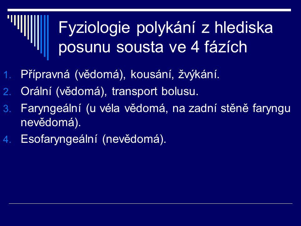 Fyziologie polykání z hlediska posunu sousta ve 4 fázích 1. Přípravná (vědomá), kousání, žvýkání. 2. Orální (vědomá), transport bolusu. 3. Faryngeální