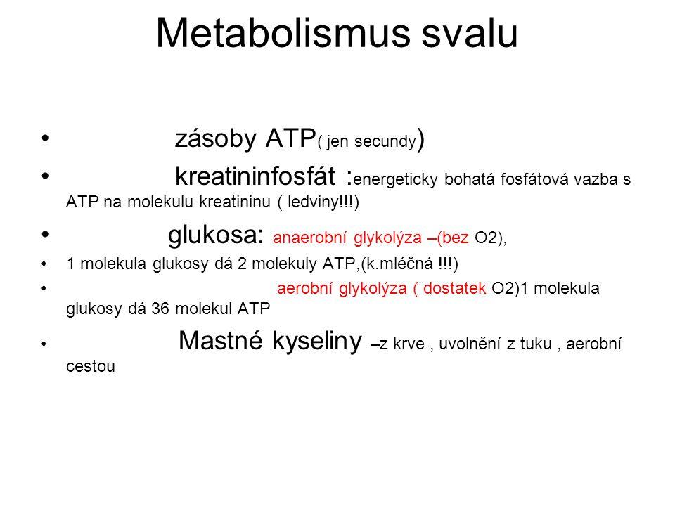 Metabolismus svalu zásoby ATP ( jen secundy ) kreatininfosfát : energeticky bohatá fosfátová vazba s ATP na molekulu kreatininu ( ledviny!!!) glukosa: