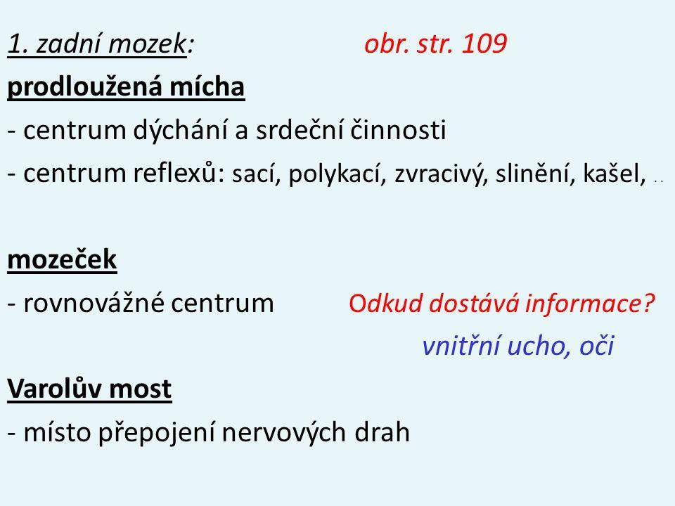 1. zadní mozek: obr. str.