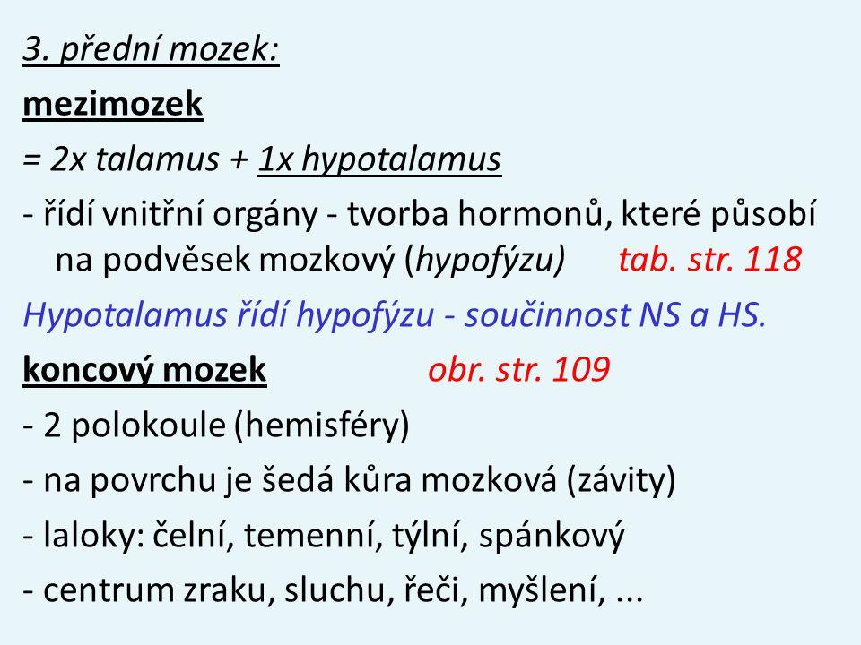 3. přední mozek: mezimozek = 2x talamus + 1x hypotalamus - řídí vnitřní orgány - tvorba hormonů, které působí na podvěsek mozkový (hypofýzu) tab. str.