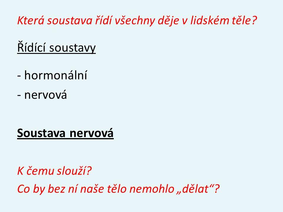 Zdroje: Novotný I., Hruška M.: Biologie člověka, Fortuna, Praha, 1995, ISBN 80-7168-234-9 Dobroruka L., Vacková B., Králová R., Bartoš P.: Přírodopis III, Scientia, Praha, 1999, ISBN 80-7183-167-0