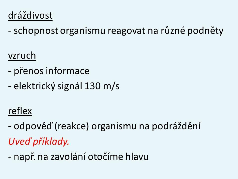 dráždivost - schopnost organismu reagovat na různé podněty vzruch - přenos informace - elektrický signál 130 m/s reflex - odpověď (reakce) organismu na podráždění Uveď příklady.