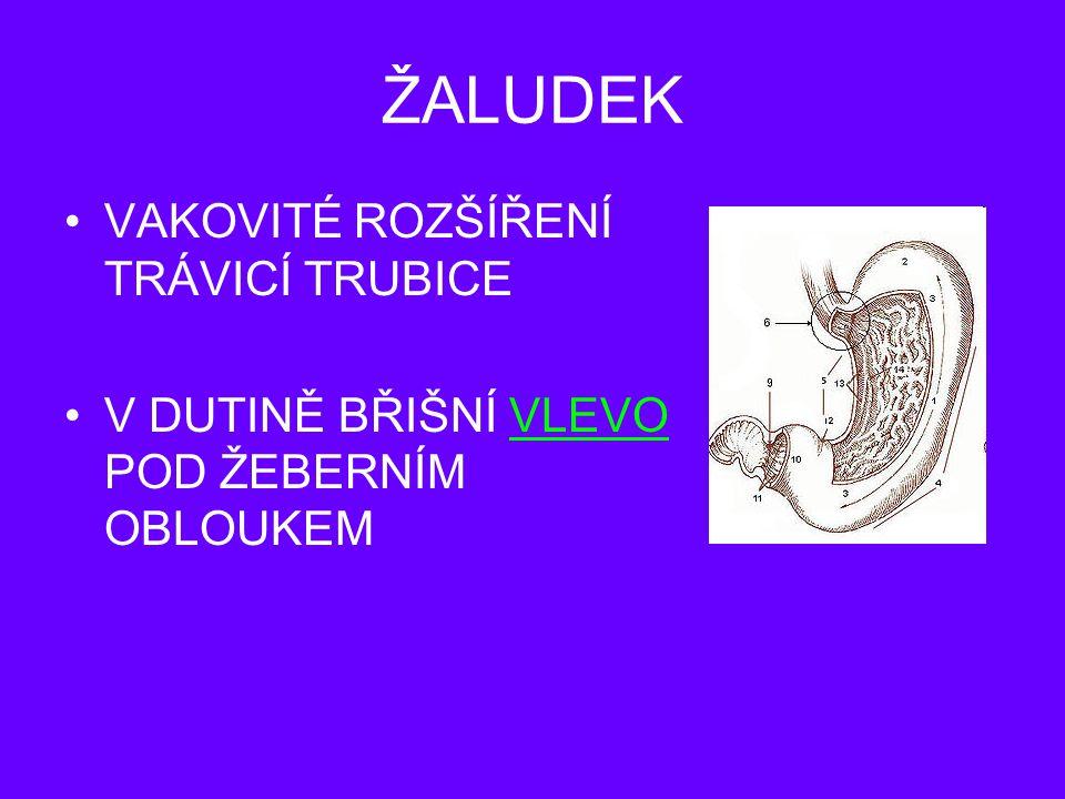 http://biology.mypage.cz/menu/travici-soustava http://eamos.pf.jcu.cz/amos/demo/modules/low/kurz_text.php?id_kap=3&kod_kurzu=demo _25193http://eamos.pf.jcu.cz/amos/demo/modules/low/kurz_text.php?id_kap=3&kod_kurzu=demo _25193 Autor: Mgr.