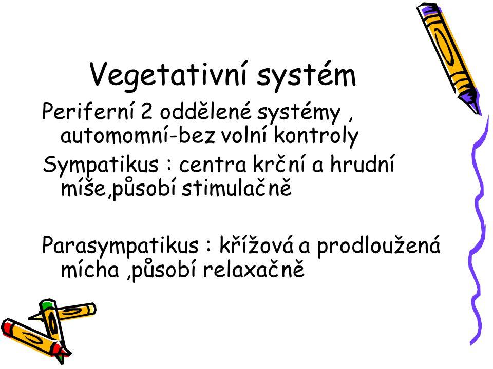 Vegetativní systém Periferní 2 oddělené systémy, automomní-bez volní kontroly Sympatikus : centra krční a hrudní míše,působí stimulačně Parasympatikus