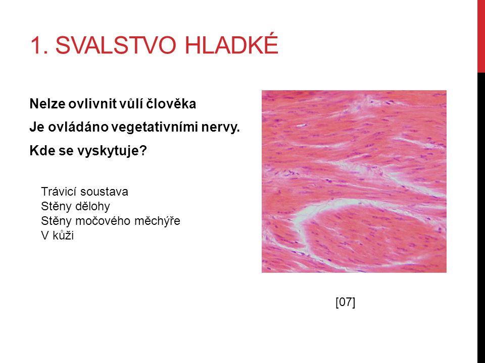 1. SVALSTVO HLADKÉ Nelze ovlivnit vůlí člověka Je ovládáno vegetativními nervy.