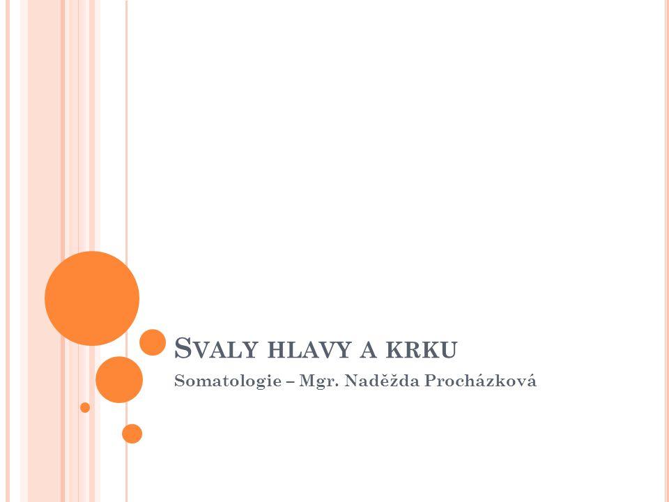 S VALY HLAVY A KRKU Somatologie – Mgr. Naděžda Procházková
