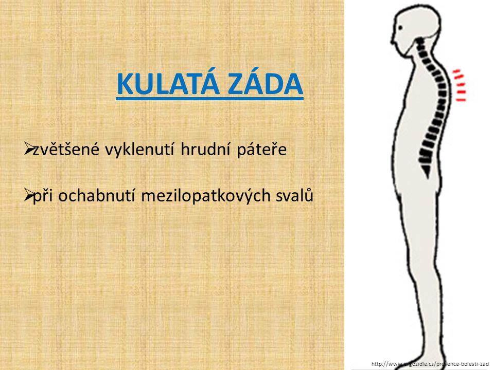 stoje KULATÁ ZÁDA  zvětšené vyklenutí hrudní páteře  při ochabnutí mezilopatkových svalů http://www.ergozidle.cz/prevence-bolesti-zad