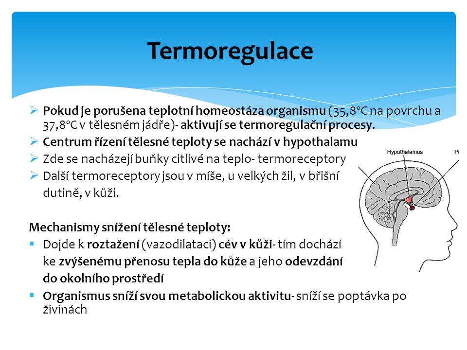  Pokud je porušena teplotní homeostáza organismu (35,8ºC na povrchu a 37,8ºC v tělesném jádře)- aktivují se termoregulační procesy.