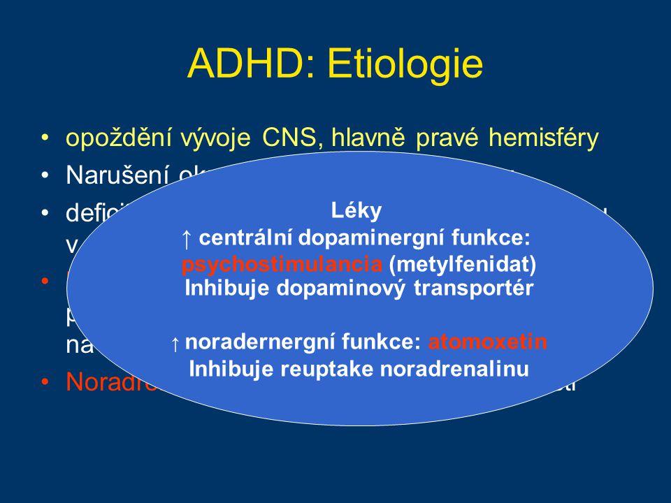 ADHD: Etiologie opoždění vývoje CNS, hlavně pravé hemisféry Narušení okruhu PFC-STR-TAL-kortex deficit či opožděná maturace NA a DA systému v prefront