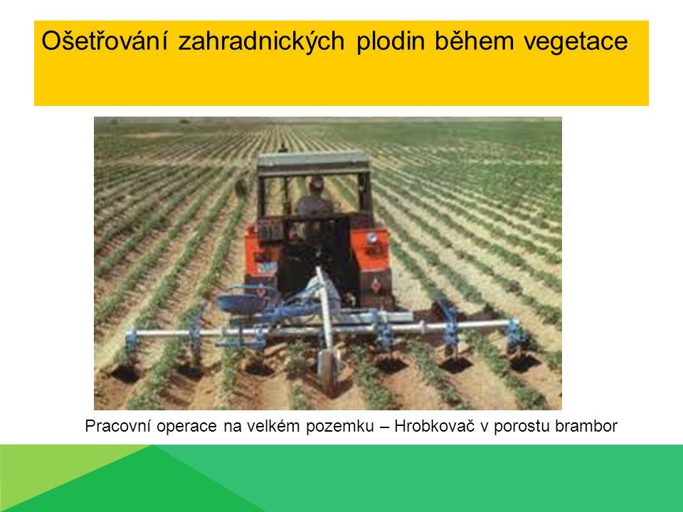 Ošetřování zahradnických plodin během vegetace Pracovní operace na velkém pozemku – Hrobkovač v porostu brambor