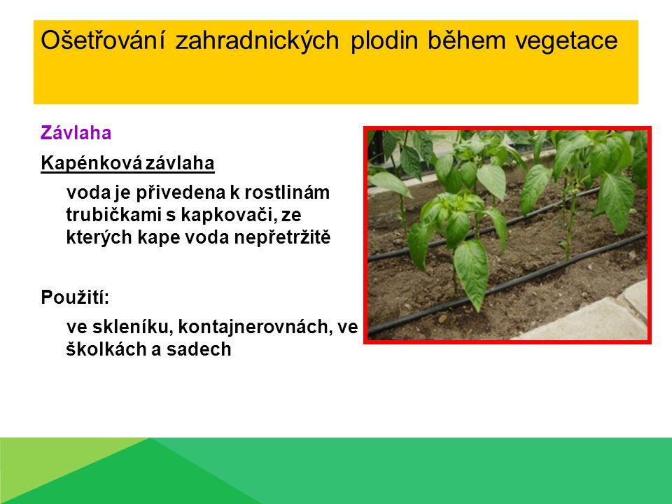 Závlaha Kapénková závlaha voda je přivedena k rostlinám trubičkami s kapkovači, ze kterých kape voda nepřetržitě Použití: ve skleníku, kontajnerovnách