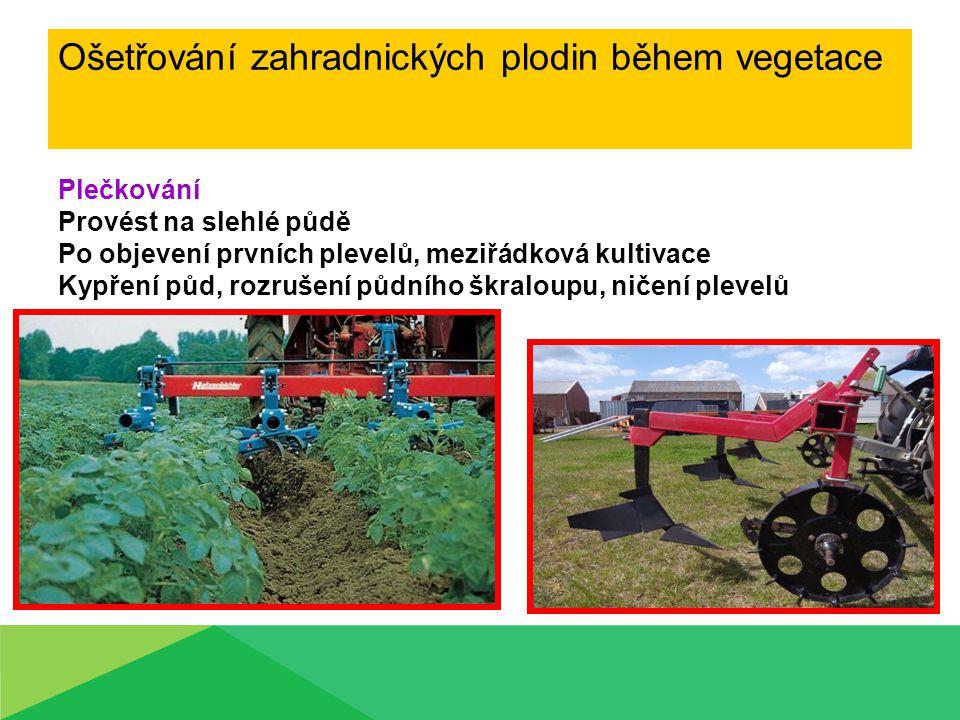 Ošetřování zahradnických plodin během vegetace Plečkování Provést na slehlé půdě Po objevení prvních plevelů, meziřádková kultivace Kypření půd, rozru