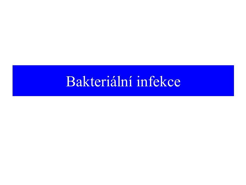 Bakteriální infekce