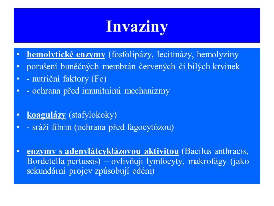 Invaziny hemolytické enzymy (fosfolipázy, lecitinázy, hemolyziny porušení buněčných membrán červených či bílých krvinek - nutriční faktory (Fe) - ochr