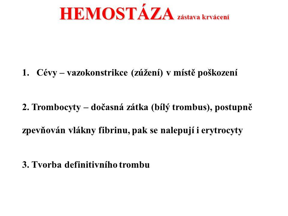 HEMOSTÁZA zástava krvácení 1.Cévy – vazokonstrikce (zúžení) v místě poškození 2. Trombocyty – dočasná zátka (bílý trombus), postupně zpevňován vlákny