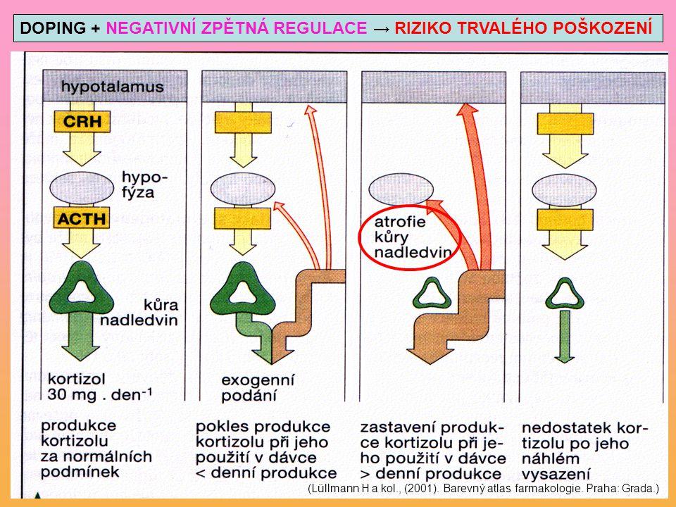 DOPING + NEGATIVNÍ ZPĚTNÁ REGULACE → RIZIKO TRVALÉHO POŠKOZENÍ (Lüllmann H a kol., (2001). Barevný atlas farmakologie. Praha: Grada.)