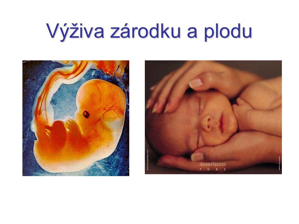 Vývoj choriových klků ke konci těhotenství syncytiotrofoblast místy degeneruje → ukládání fibrinu z mateřské krve → fibrinoid v konečné podobě 3 druhy klků: úponový klk (villus ancorans) – připojený k decidua basalis větvený klk (villus ramosus) – větví se v intervilózních prostorech volný klk (villus liber) ční do v intervilózního prostoru oddělení vaziva matky a plodu – cytotrofoblastová obálka